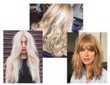 Модный блонд: что выбрать для цвет волос, блондинка